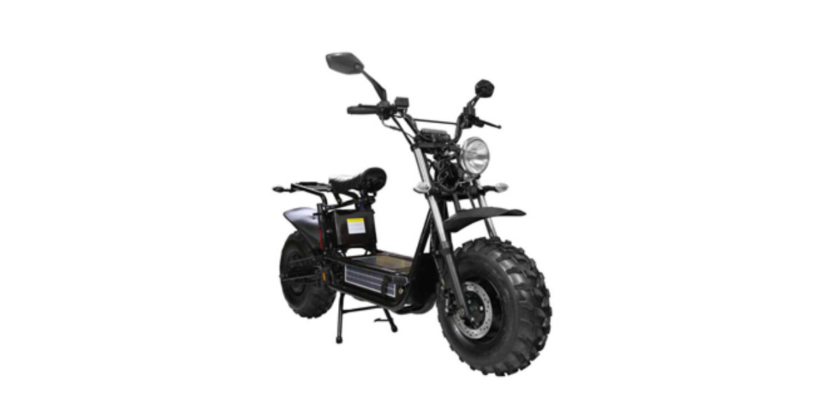 Daymak Beast Standard Review - Electric Ride Reviews, Prices, Specs