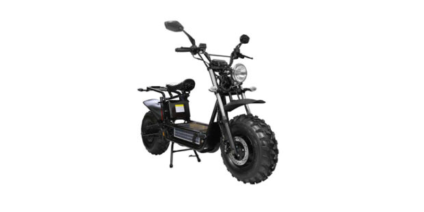 Daymak Beast Deluxe Review - Electric Ride Reviews, Prices