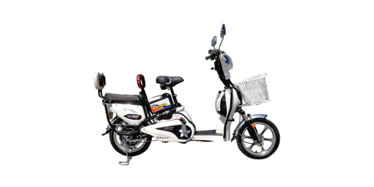 Ecobike New York Electric Bike Review